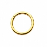 Gold PVD Steel Hinged Segment Ring