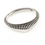Striped Shield Steel Hinged Segment Ring