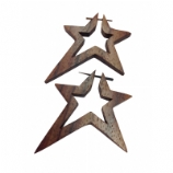 Organic Wood Star Ear Ring
